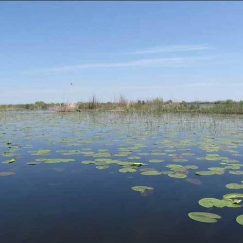 Lacul Isac (Isacov)